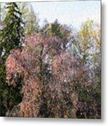 Blossom Tree Impressionist Metal Print