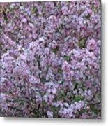 Blossom Tree Metal Print