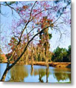 Blossoms And Spanish Moss Metal Print