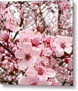 Blossoms Art Spring Pink Tree Blossom Floral Baslee Troutman Metal Print