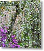 Blossoms Galore Metal Print
