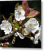Blosson Standout Metal Print