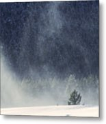 Blowing Snow Metal Print