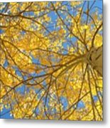 Blue And Gold II Metal Print