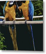 Blue And Gold Macaw 1 Metal Print