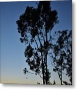 Blue And Gold Sunset Tree Silhouette I Metal Print