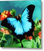 Blue Butterfly On Lantana Plant Oil Painting Metal Print