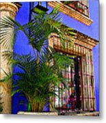Blue Casa With Fern Metal Print