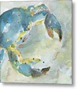 Blue Crab. Metal Print