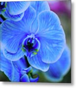 Blue Diamond Metal Print