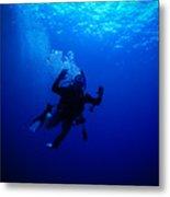 Blue Diver Metal Print