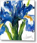 Blue Dutch Iris For Kappa Kappa Gamma Metal Print