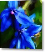 Blue Flower 10-30-09 Metal Print
