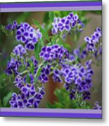 Blue Flowers With Colorful Border Metal Print
