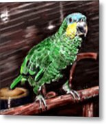 Blue-fronted Amazon Parrot Metal Print