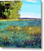 Blue Grass Sunny Day Metal Print