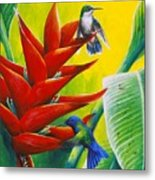 Blue-headed Hummingbirds and heliconia Metal Print
