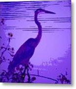 Blue Heron... Metal Print