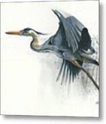 Blue Heron Metal Print