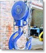 Blue Hook Metal Print