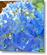 Blue Hydrangea Flowers Art Prints Summer Hydrangeas Baslee Metal Print