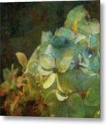 Blue Hydrangea Sunset Impression 1203 Idp_2 Metal Print