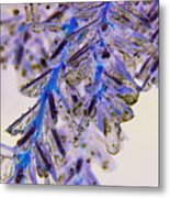 Blue Ice.. Metal Print