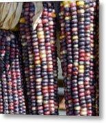 Blue Indian Corn Metal Print