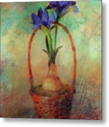 Blue Iris In A Basket Metal Print