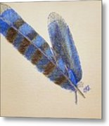 Blue Jay Feathers Metal Print