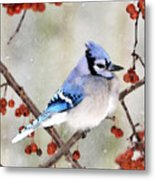Blue Jay In Snowfall 3 Metal Print