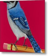 Bluejay Perched On Pencil Metal Print