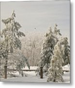 Blue Knob Winter Metal Print