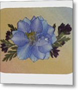 Blue Larkspur And Oregano Pressed Flower Arrangement Metal Print