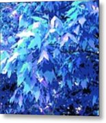 Blue Autumn  Metal Print