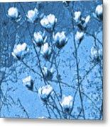 Blue Magnolia Metal Print