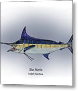 Blue Marlin Metal Print by Ralph Martens