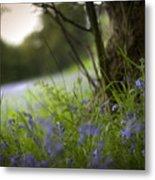 Blue Meadow Metal Print