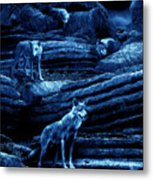 Blue Moon Wolf Pack Metal Print
