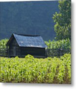 Blue Mountain Farm Metal Print