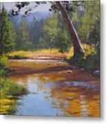 Blue Mountains Coxs River Metal Print by Graham Gercken