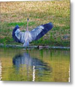 Blue On The Bank Metal Print