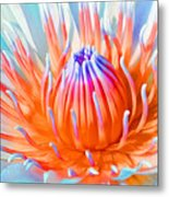 Blue Orange Lily Metal Print