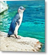 Blue Penguin Metal Print
