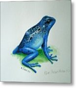 Blue Poison Arrow Frog Metal Print