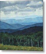Blue Ridge From Grassy Bald  Study Metal Print