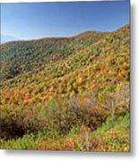Blue Ridge Mountains In Autumn Metal Print