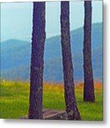 Blue Ridge Mountains Of Virginia Metal Print