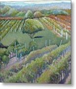 Blue Ridge Vineyards 4.0 Metal Print
