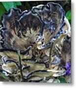 Blue Rimmed Fungus Metal Print
